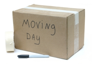 moving-day1